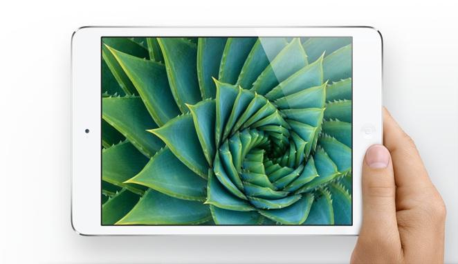 iPad Mini Product Shot